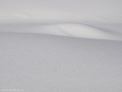 snow_shadows_1